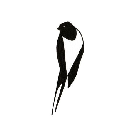 Logo simple Hirondelle
